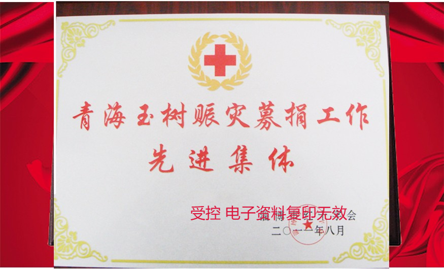 Advanced Collective of Qinghai Yushu Disaster Relief Collection Work